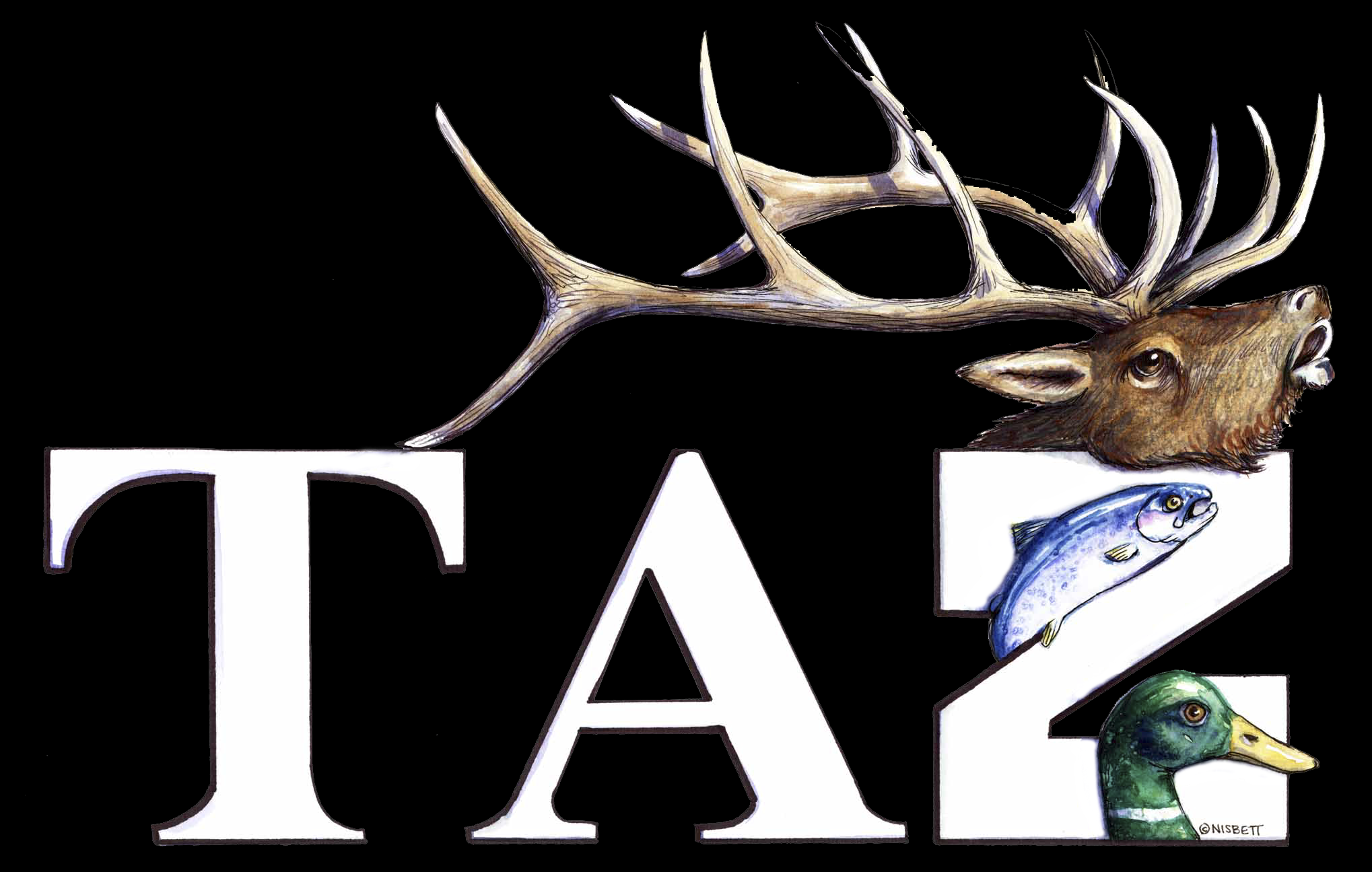 TAZ Outdoors